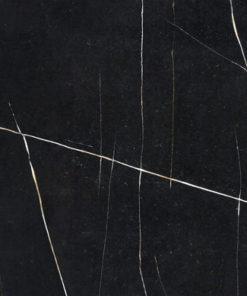 Et Noir Quartz slab example by Silestone